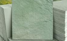 Ard�sia Verde Altivo Pedras